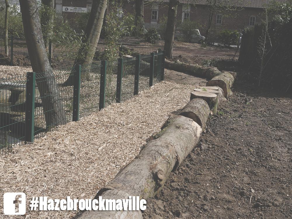 Création d'un nouveau chemin dans le jardin public