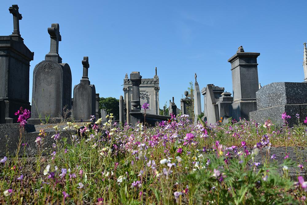 Travaux dans les cimetières