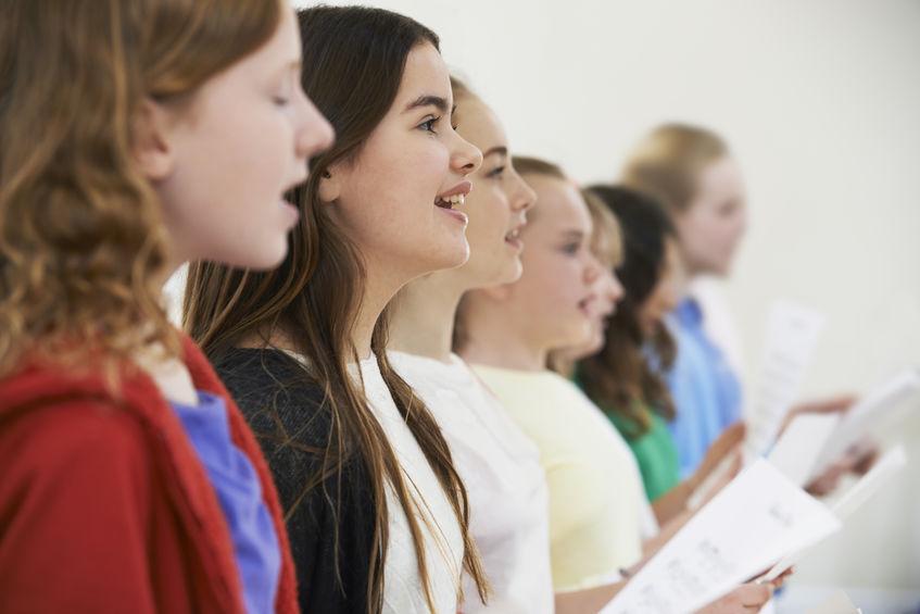 Chorale Les Amis de Chœur de Flandre Intérieure